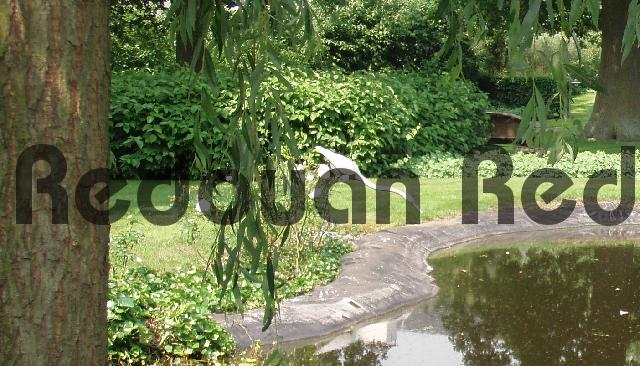 Product picture Blue heron statue in drinking pose at a pond in the backyard